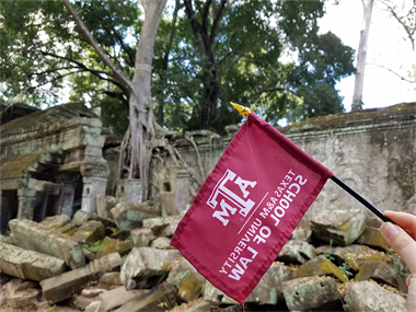 柬埔寨- TAMU Law at Ta Prohm